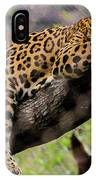 Jaguar Relaxation IPhone Case