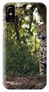 Jaguar Sitting In Trees In Dappled Sunlight IPhone Case