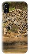Jaguar Walking Beside River In Dappled Sunlight IPhone Case