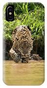 Jaguar Walking Through Muddy Shallows Towards Camera IPhone Case