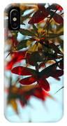 Japanese Maple 1592 IPhone Case