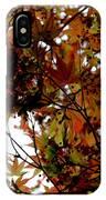 Japanese Maple 2011-1 IPhone Case