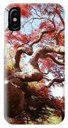 Japanese Maple Tree In Spring IPhone Case