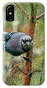 Jay Painterly IPhone X Case