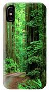 Jedediah Smith Redwoods                            IPhone Case