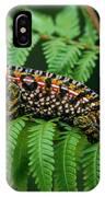 Jeweled Chameleon Furcifer Lateralis IPhone Case