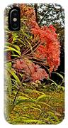 Joe-pye-weed Near Schroon River In New York IPhone Case