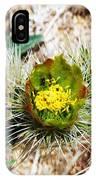 Joshua Tree Cactus Bloom II IPhone Case