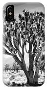 Joshua Trees Bw IPhone Case