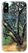 Juan Bautista De Anza Trail Oak IPhone Case