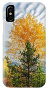 Jughandle Mountain IPhone Case
