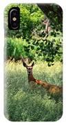 June Doe In Tall Grass IPhone Case