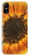 June Sunflowers #2 IPhone Case