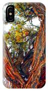 Juniper Bark IPhone Case
