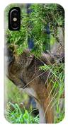 Just A Peek Around The Corner IPhone Case
