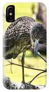 Juvenile Black Crowned Night Heron IPhone Case