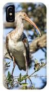 Juvenile White Ibis IPhone Case