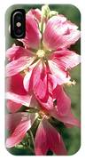 Kashmir Tree Mallow  IPhone Case