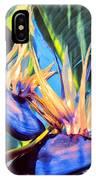 Kauai Bird Of Paradise IPhone Case
