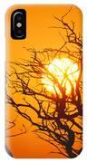 Keawe Tree At Sunset IPhone Case