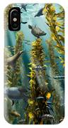 Kelp Forest With Seals IPhone Case