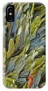 Kelp On A Rock IPhone Case