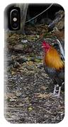 Key West Chickens IPhone Case