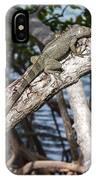 Key West Iguana In Mangrove 3 IPhone Case