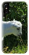Kid Goat In Bushes IPhone Case