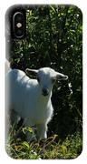 Kid Goat On A Farm IPhone Case