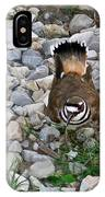 Kildeer And Eggs IPhone Case