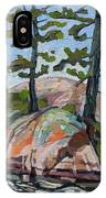Killarney Point- The Phlip Side IPhone Case