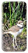 Killdeer Chick IPhone Case