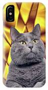 King Kitty With Golden Eyes IPhone Case
