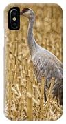 King Of The Delta Cornfield IPhone Case