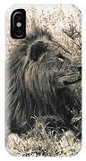 King Waiting IPhone Case