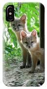 Kit Fox16 IPhone Case