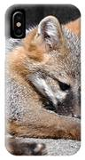Kit Fox8 IPhone Case