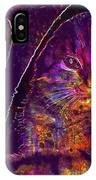 Kitten Red Cat Cat Tom Cat Pets  IPhone Case