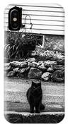 Kitty Across The Street Black And White IPhone Case