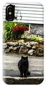 Kitty Across The Street  IPhone Case