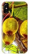 Kiwis In Kiwiland IPhone Case
