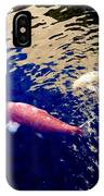 Koi On Blue And Gold IPhone Case