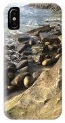 La Jolla Beach IPhone Case