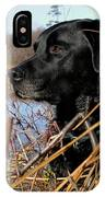 Labrador Retriever Waiting In Blind IPhone Case