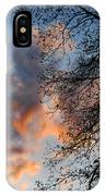 Lace In The Sunset IPhone Case