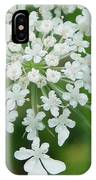 Lace On Stems IPhone Case