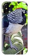 Lady Amherst's Pheasant IPhone Case