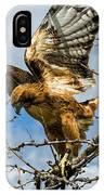 Lady Hawke IPhone Case