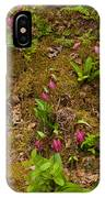 Lady Slippers And Star Flower IPhone Case